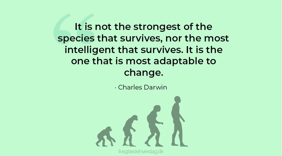 Fire skikkelser i udvikling fra abe til menneske og citat af Charles Darwin: It is not the strongest of the species that survives, nor the most intelligent that survives. It is the one that is most adaptable to change